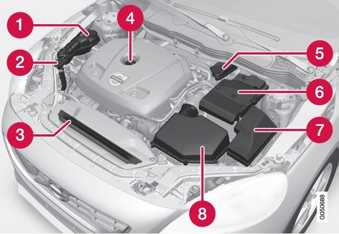 发动机舱外观依发动机型式不同可能会有差异。