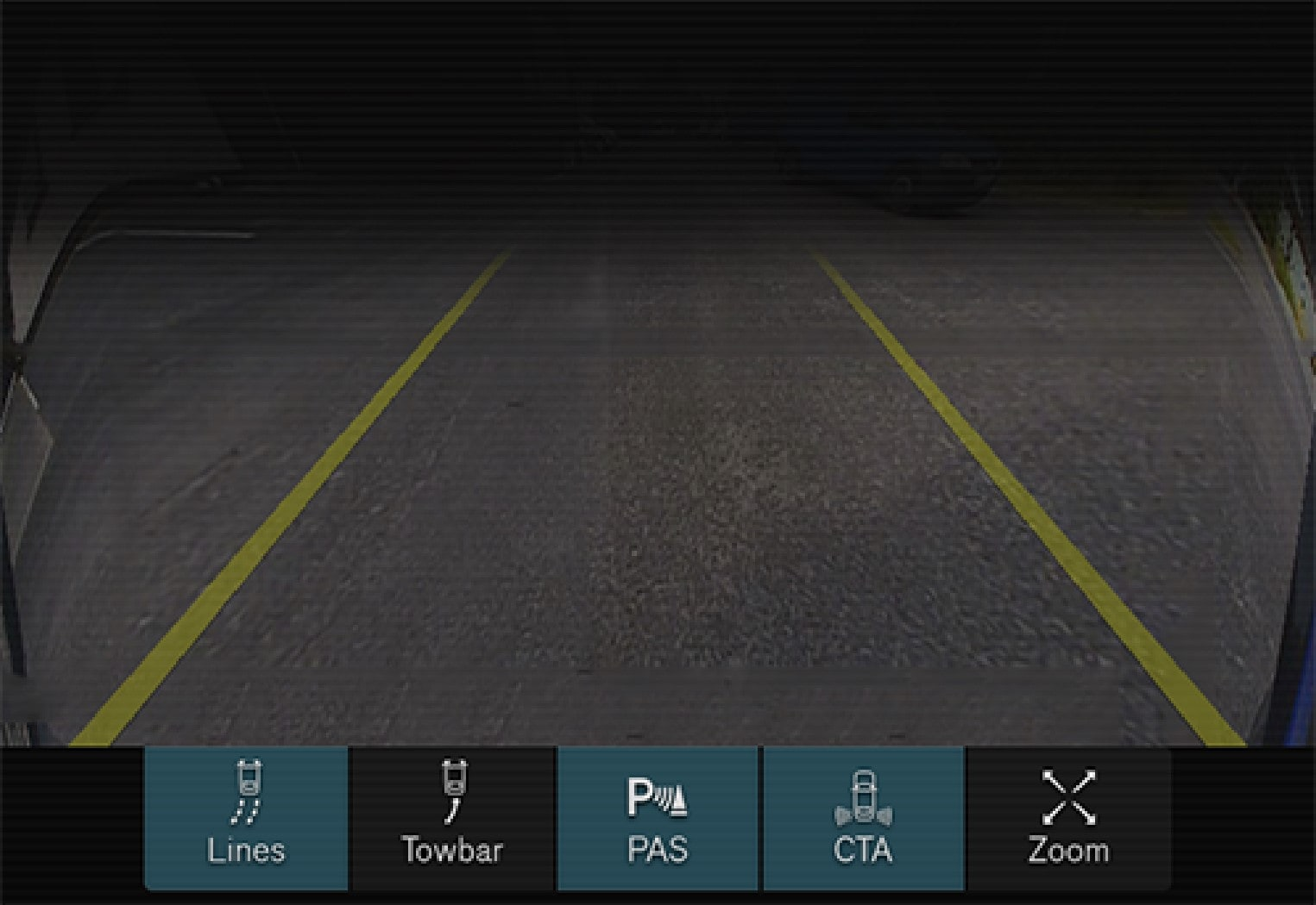 Examples of how the park assist lines can be displayed for the driver.