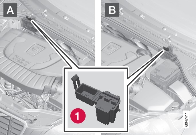 P3-1246-V60H Vacuum pump monitoring fuse