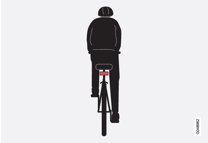 Optimum examples of what the system interprets as a cyclist - with clear body and bicycle contours, directly from behind and in the car
