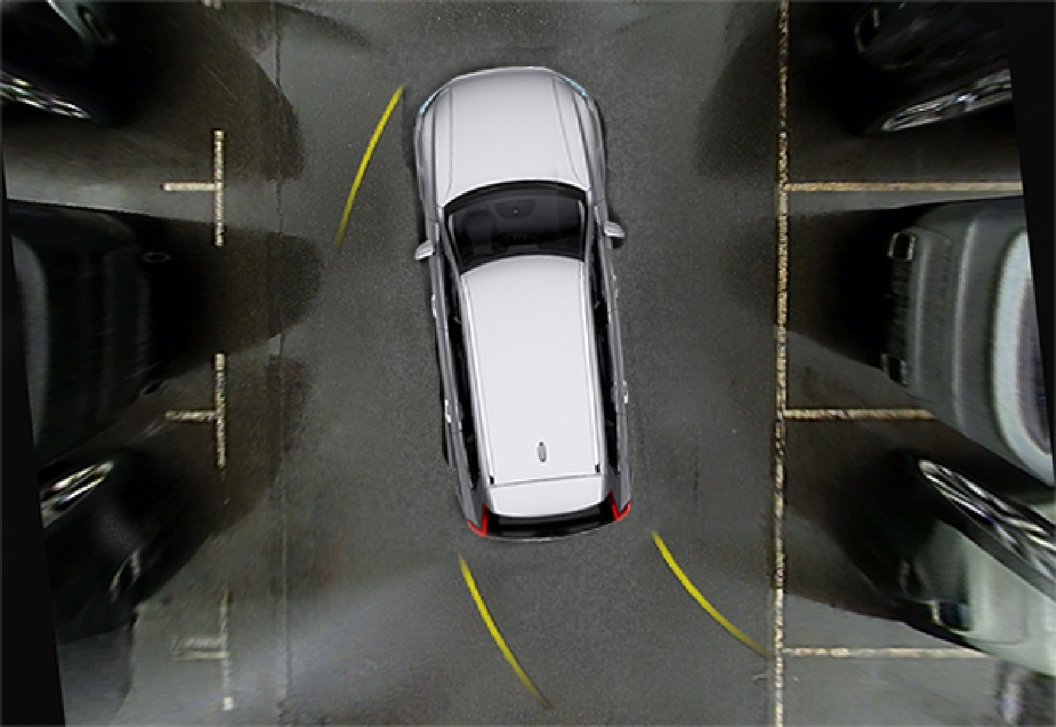 360° view with park assist lines.