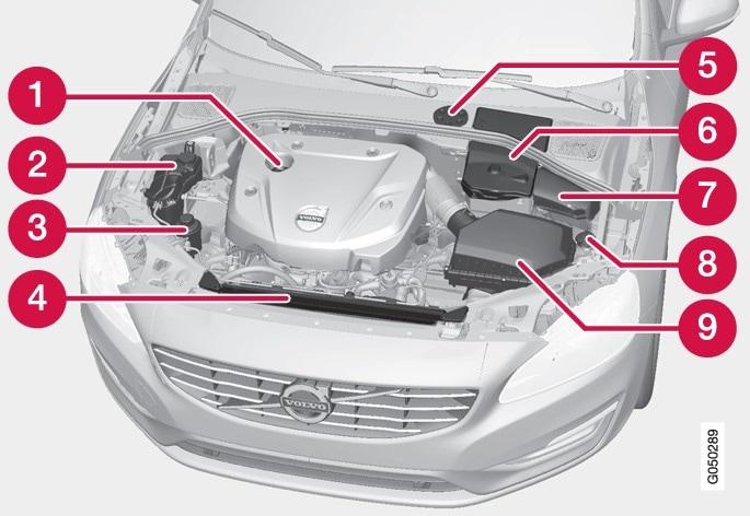 Das Aussehen des Motorraums kann je nach Motorausführung variieren.