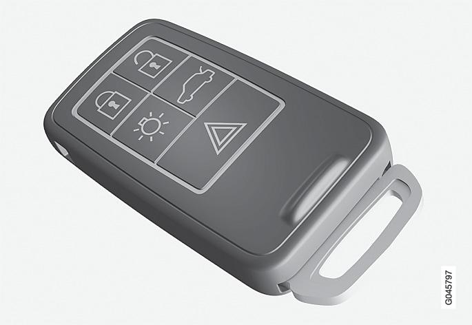P4-1220-Y55X-Remote key, standard version