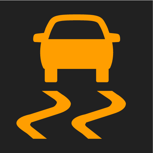 P5-1507- Electronic Stability Control symbol